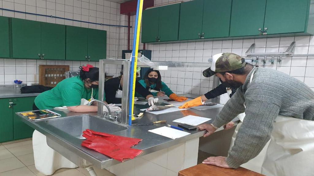 Mar del Plata: abren una nueva inscripción para los cursos de formación en oficios portuarios