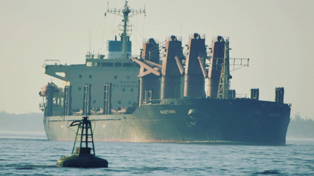 Duro impacto en el comercio agroindustrial argentino de la suba en los fletes marítimos