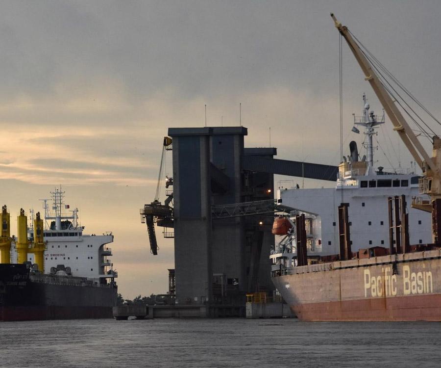 Exportación de granos y aceites: en un año se duplicaron los precios de los fletes marítimos