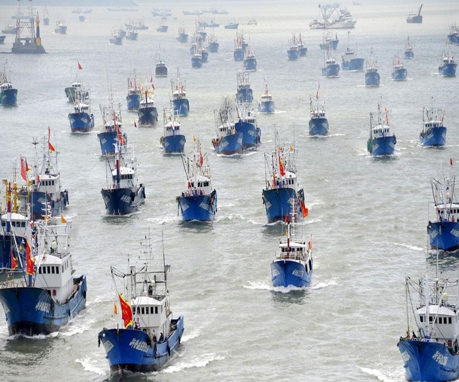 ¿Alguien puede detener a  la flota  pesquera china que arrasa los mares violando todas las reglas?