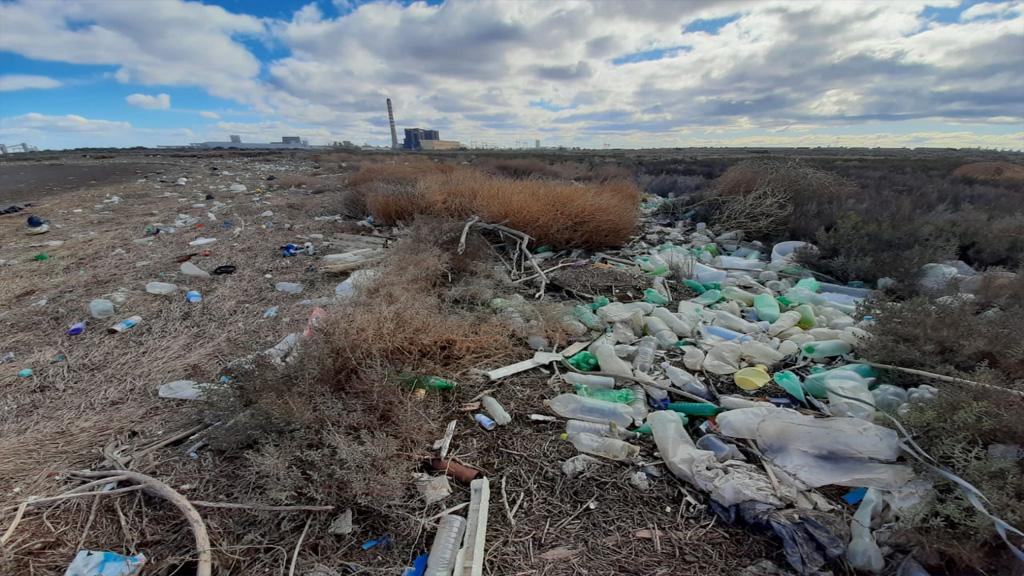 Fuerte acción medioambiental del puerto de Bahía Blanca en un sector costero degradado