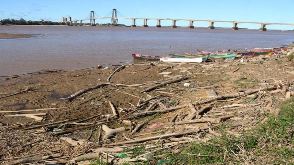 """Video: """"La situación del Paraná es crítica y no hay señales de que vaya a cambiar"""""""