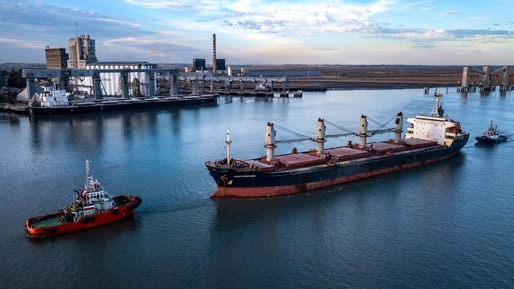 Se descargaron 288.645 toneladas de granos en las terminales portuarias bahienses