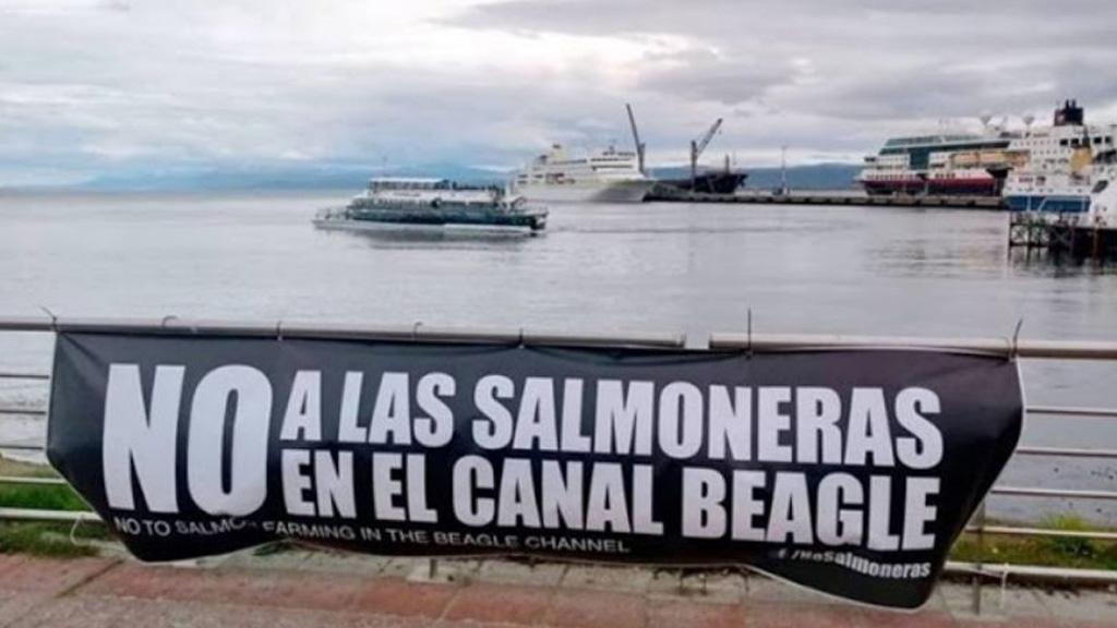"""Tierra del Fuego prohibirá por ley la cría de salmones en una medida """"inédita en el mundo"""""""