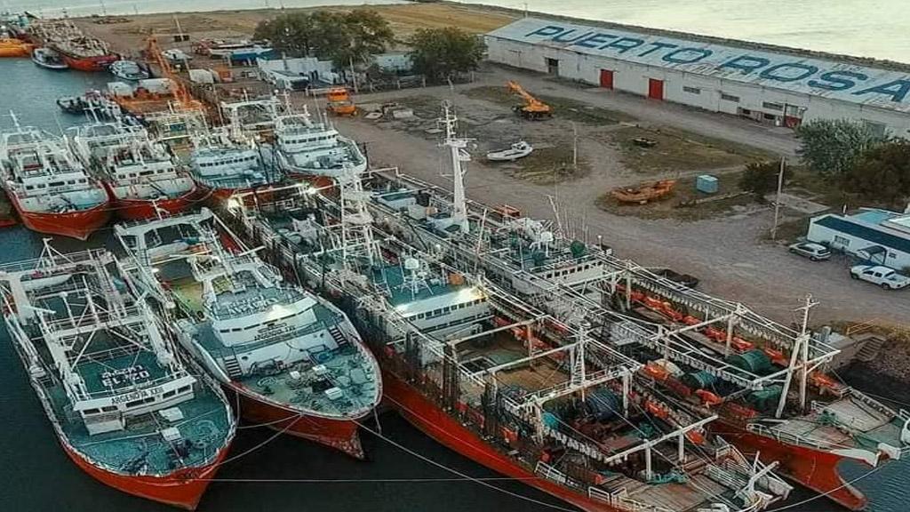 Profundizar operaciones y diversificar cargas, claves en Puerto Rosales para generar empleo